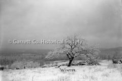 0060-Winter-36