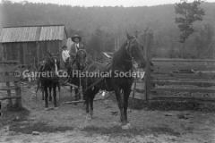 1034-Team-of-Horses-1034