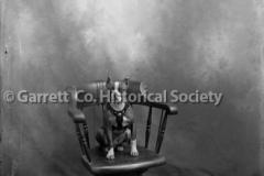 1084-Portrait-Bull-D44B8D0