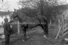 1122-Man-Horse-Joe44B907