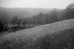 1131-Custer-Field-1131
