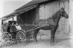 1175-Couple-in-Horse44B93D