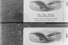 1256-Wings-106A