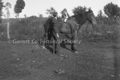 1377-Child-on-Horse-230A