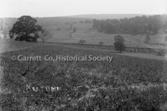1521-Autumn-Field-44BAE0