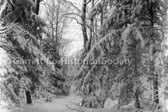 1544-Winter-Scene-El44BAF8