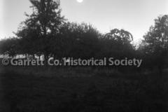 1648-Orchard-at-Night-505A