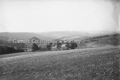 1822-Cove-Yellowed-P44BBE7
