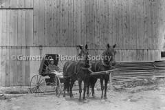 1700-Horse-Buggy-557A