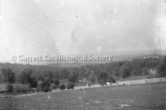 1712-Field-Trees-570A