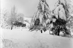 1831-Snow-Scene-676A
