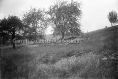 1833-Trees-Rail-Fe44BC39