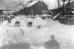 1846-Snow-on-Bee-Hiv44BC53