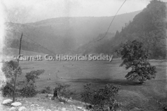 1848-Cows-in-Valley-694A
