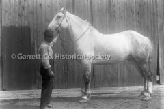 2344-Man-Horse-204B