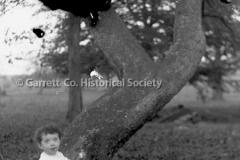 2397-Child-Under-Tree-257B