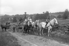 2466-Horses-Wagons-326B