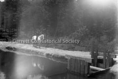 0310-Mill-Pond-310