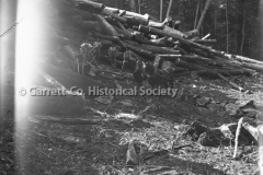 0311-Logs-and-Loggers-311