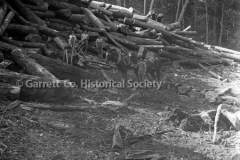 0348-Logs-and-Loggers-348