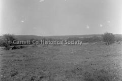 0385-Meadow-Rail-F44B420