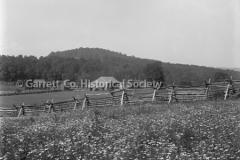 0388-Rail-Fence-Farm-388