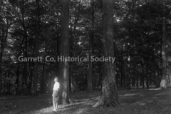 0743-Trees-743