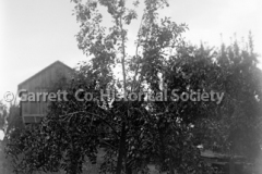 0811-Pear-Tree-Barn-811